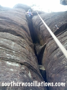 climbing pregnant 1